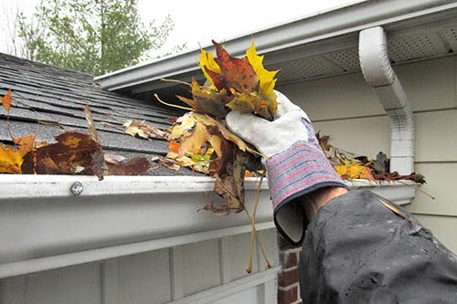 Nature...This close up shot shows a hand, lifting autumn leaves from a roof top gutter.