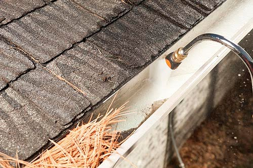 """""""A house rain gutter is being cleaned with a specialized curved pressure washer nozzle. The bottom left portion of the gutter is filled with pine needles and debris, the right gutter is clean."""""""